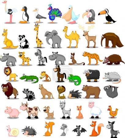 lion, kangaroo, giraffe, elephant, camel, antelope, hippo, tiger, zebra, rhinoceros