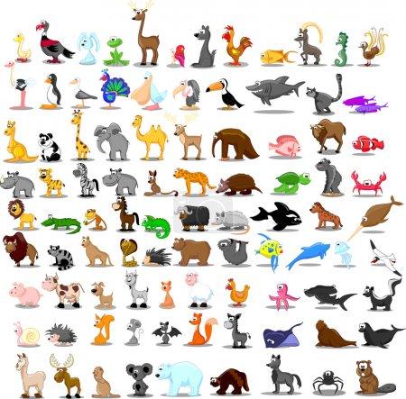 Illustration for Large set of animals - Royalty Free Image