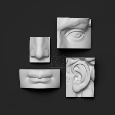 3d anatomy sculptural face details