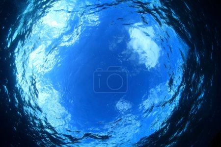 Photo for Water surface of the blue ocean - Royalty Free Image