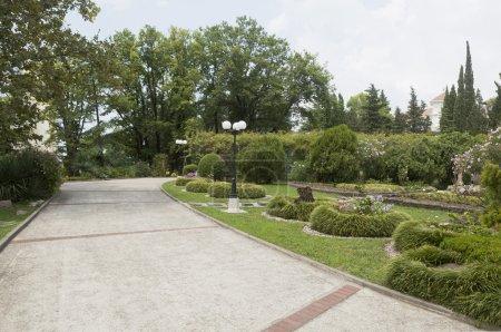 The territory of the sanatorium Green Guy Tuapse
