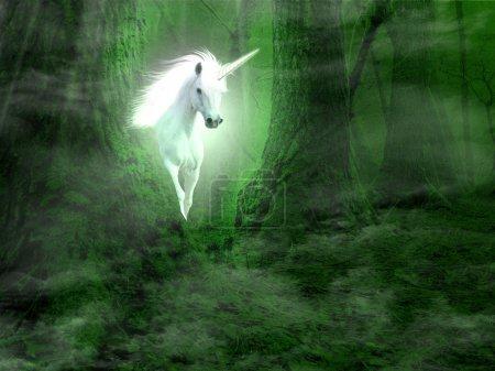 Photo pour Une photo de Licorne apparaissant à partir de la forêt - image libre de droit