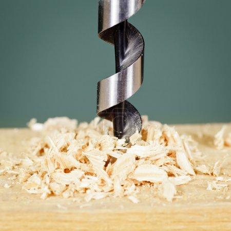 Photo pour Foret à bois avec rasage - image libre de droit