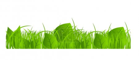 Illustration for Flower and grass Borders set. vector illustration - Royalty Free Image