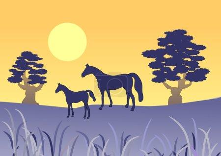 Photo pour Une image simpliste d'un cheval avec un poulain au coucher du soleil . - image libre de droit