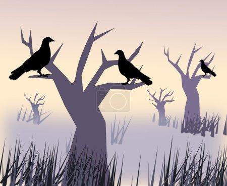Black Birds in the Sunset