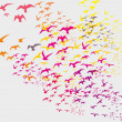 Birds silhouette sets vector art...