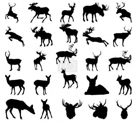 Illustration pour Vecteur silhouette orignal, cerf, renne - image libre de droit
