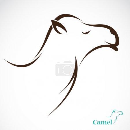 Illustration pour Image vectorielle d'un chameau sur fond blanc - image libre de droit