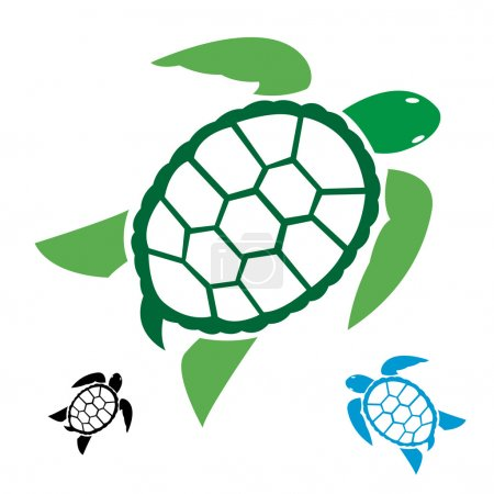 Vector image of an turtle