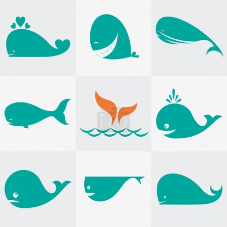 Set of vector whale icons