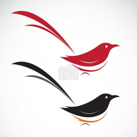 Vector image of an magpie