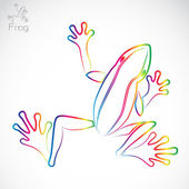 Vector image of an frog