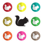 Vector group of squirrel