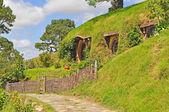 Walkway at hobbiton