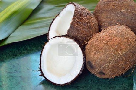 Few coconuts on green marble slab