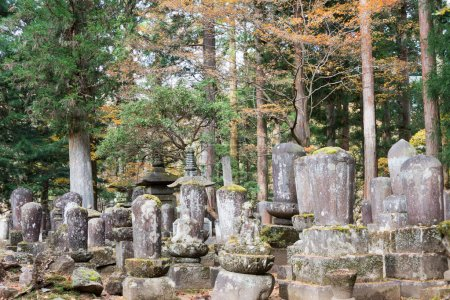 Old cemetery in Kanmangafuchi, Nikko, Japan