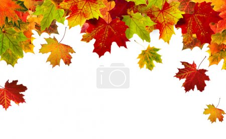 Photo for Border frame of colorful autumn leaves isolated on white - Royalty Free Image
