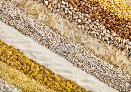 Striped rows of dry groats, couscous, bulgur, grain cereal, buckwheat, rice, backdrop