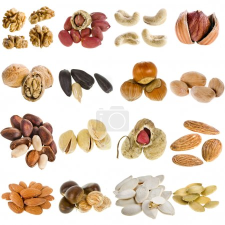 Photo for Large collection of nuts, seeds isolated on a white background - Royalty Free Image