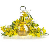 Flower of a rapeseed, Rape blossoms with bottle decanter oil, isolated on white background