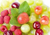 čerstvé ovoce a bobuloviny