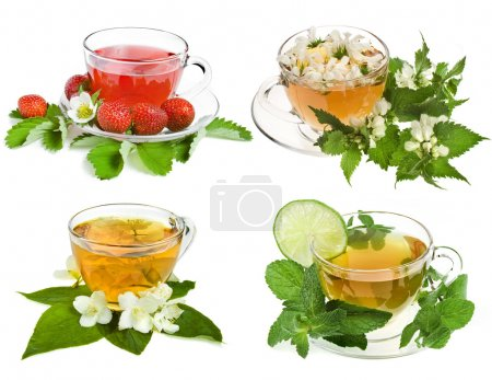 Herbal and fruit teas. Collection isolated on whit...