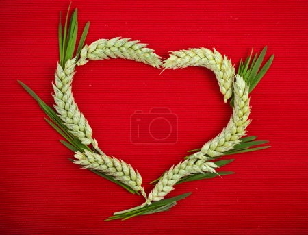 Heart symbol made of wheat ears card with copy space on red texture background