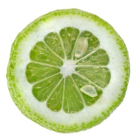 Photo pour Tranche de citron vert - image libre de droit
