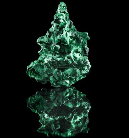 Photo for Malachite mineral stone close up with reflection on black surface background - Royalty Free Image