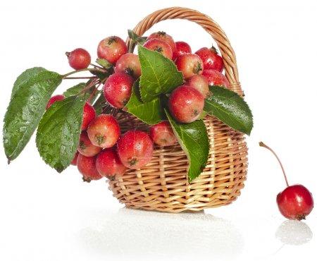 schöne Apfelfrüchte im Weidenkorb