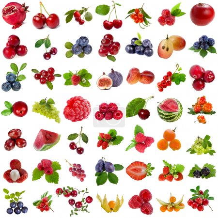 Photo for Collection set of fresh ripe fruits and berries close up sign objects isolated on white background - Royalty Free Image