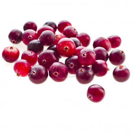 Cranberries close up isolated on white background