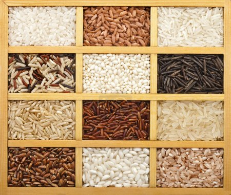 Photo pour Variété de grains de riz (blanc, brun, noir, sauvage, basmati, arborio, court, long grain) dans la case en bois à vintage - image libre de droit