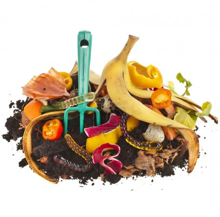 Compost pile of kitchen scraps