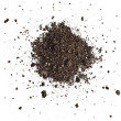 Pile heap of soil humus isolated on white backgrou...