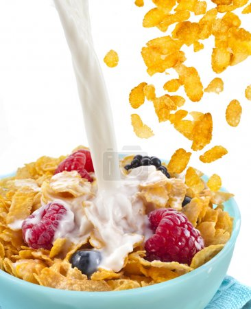 Photo for Falling corn flakes with fresh berries and pouring milk isolated on white background - Royalty Free Image
