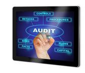 Auditování