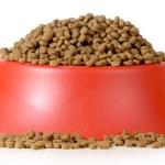 Bowl of dog food isolated on white background...