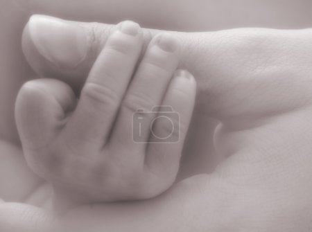 Photo for Mother and newborn baby hands - soft in black and white - Royalty Free Image