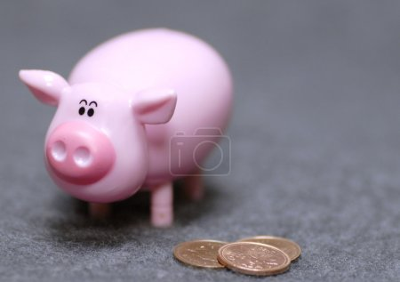 concept of saving money or taking care of the pennies
