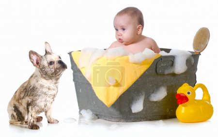 baby and puppy getting bath