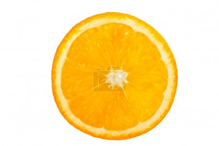 Photo for Close-up view of a slice of fresh orange. - Royalty Free Image
