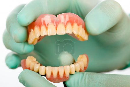 Photo for Dentist holding two prosthetic products, a total acrylic and a partial skeletal prosthesis in hands using protective gloves. - Royalty Free Image