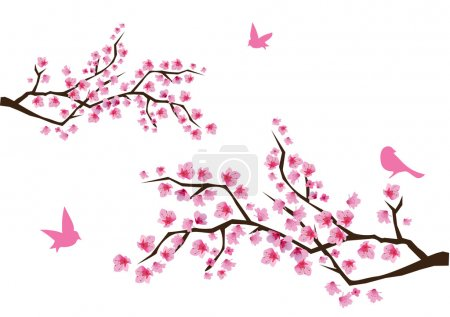 Illustration for Vector cherry blossom - Royalty Free Image