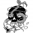 I matched a snake with the skull I expressed a ter...