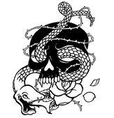 skull and a snake
