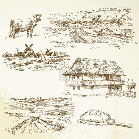 Illustration for Farming, rural landscape - Royalty Free Image