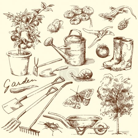Illustration for Gardening tools - Royalty Free Image