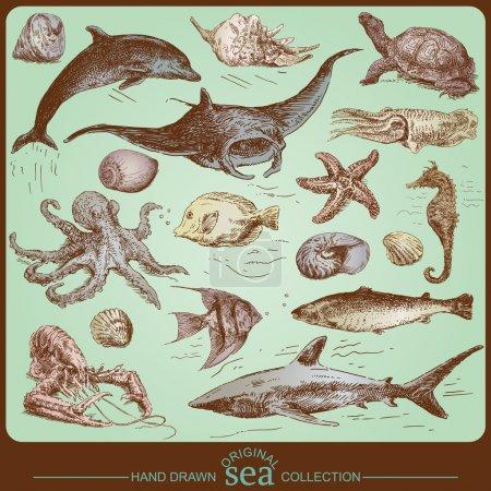 Sea collection - original hand drawn set